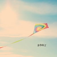 Soar Stretched Canvas by Ally Coxon