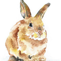 Rabbit Watercolor Reproduction - 4 x 6 in - Giclee Fine Art Print - Nursery Art Watercolor Painting
