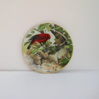 "Scarlet Tanager, ""Learning to Fly"" National Audubon Society Fine Porcelain Plate, First Edition by A.J. Rudisill"