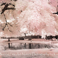"""Pink Nature Photography, Dreamy Pink Nature Photos, Pink Ethereal Nature, Fantasy Surreal Trees, Pink Flamingo Pond, Fine Art Photo 8"""" x 12"""""""
