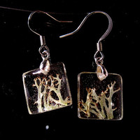 Lichen (Cladonia sp.) Earrings, Moss jewellery, Plant Jewelry, woodland, mycology, fungi