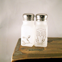 Owl Salt and Pepper Shakers Etched Glass by BeedazzledDesigns