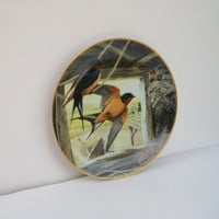 "Barn Swallow, ""Returning Home"" National Audubon Society Fine Porcelain Plate, First Edition by A.J. Rudisill"